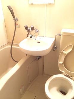 ゴミ屋敷トイレ掃除2.jpg